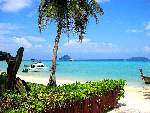 phi-phi-island_thailand