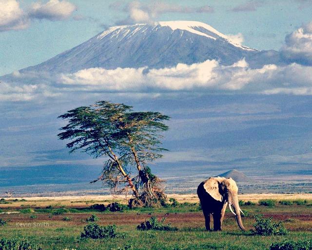 kilimandjaro-1