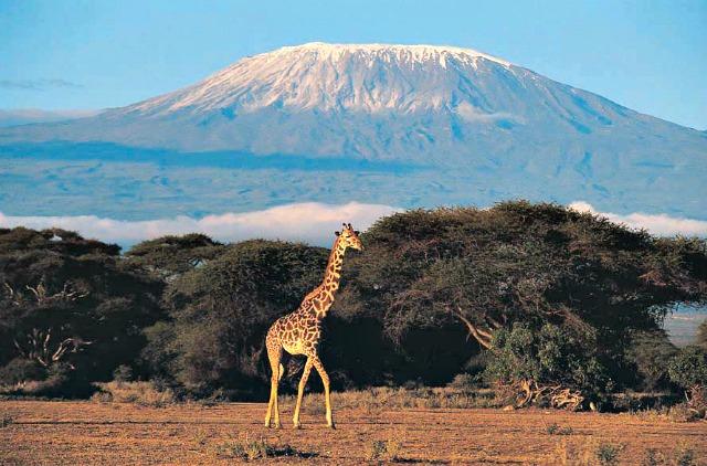 kilimandjaro-5
